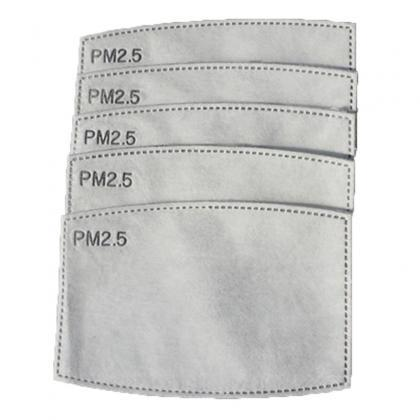 5 Layers PM2.5 Activated Carbon Fil..